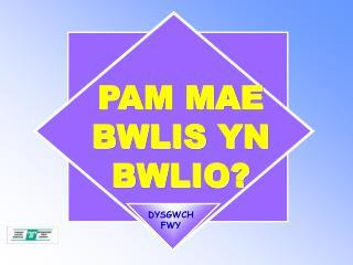 PAM MAE BWLIS YN BWLIO?