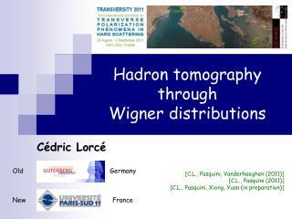 Hadron tomography through Wigner distributions