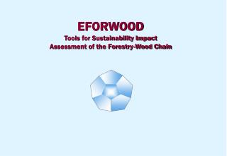 EFORWOOD Tools for Sustainability Impact Assessment of the Forestry-Wood Chain
