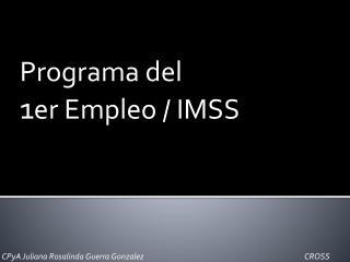 Programa del  1 er Empleo / IMSS