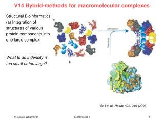 V14 Hybrid-methods for macromolecular complexes