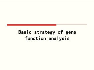 Basic strategy of gene function analysis