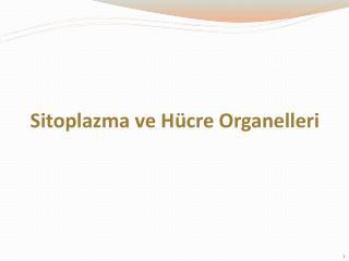 Sitoplazma ve Hücre  Organelleri
