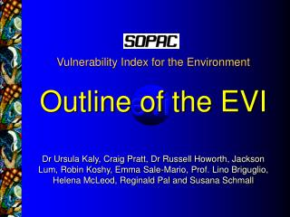 Vulnerability Index for the Environment