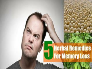 Herbal remedy for memory loss