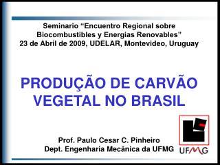 Seminario  Encuentro Regional sobre Biocombustibles y Energias Renovables  23 de Abril de 2009, UDELAR, Montevideo, Urug