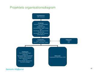 Projektets organisationsdiagram