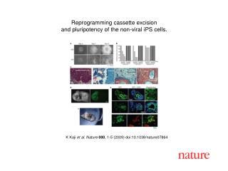 K Kaji  et al. Nature 000 , 1-5 (2009) doi:10.1038/nature07864