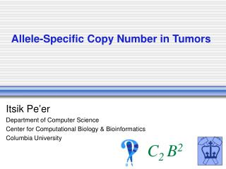 Allele-Specific Copy Number in Tumors
