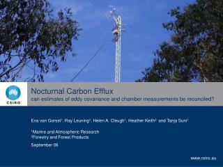 Nocturnal Carbon Efflux can estimates of eddy covariance and chamber measurements be reconciled?
