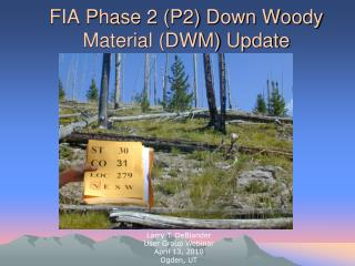 FIA Phase 2 (P2) Down Woody Material (DWM) Update