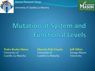 Mutation at System and Functional Levels