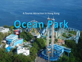 A Tourist Attraction in Hong Kong