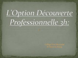 L'Option Découverte Professionnelle 3h: