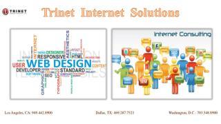 Trinet Internet solutions Inc
