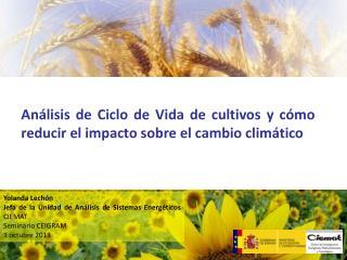 Yolanda Lechón Jefa de la Unidad de Análisis de Sistemas Energéticos  CIEMAT Seminario CEIGRAM