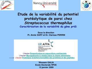Etude de la variabilit  du potentiel prot olytique de paroi chez Streptococcus thermophilus Caract risation de la variab