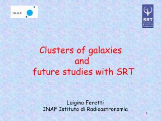 Clusters of galaxies  and  future studies with SRT