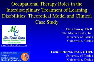 Occupational Therapy Roles in the Interdisciplinary Treatment of Learning Disabilities: Theoretical Model and Clinical C