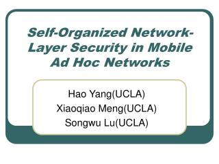 Self-Organized Network-Layer Security in Mobile Ad Hoc Networks