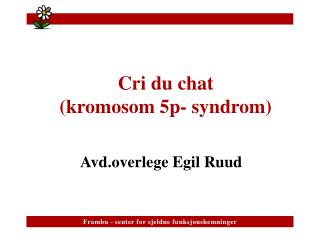 Cri du chat   kromosom 5p- syndrom