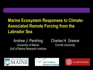 Marine Ecosystem Responses to Climate-Associated Remote Forcing from the Labrador Sea