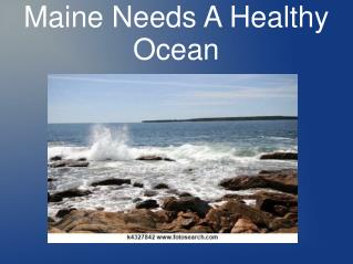 Maine Needs A Healthy Ocean