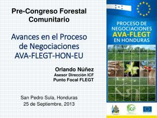 Avances en el Proceso  de  Negociaciones AVA-FLEGT-HON-EU