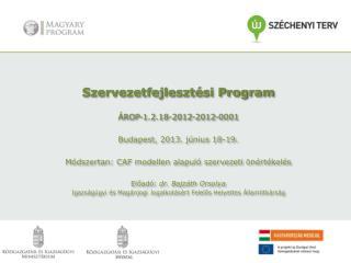 Szervezetfejlesztési Program ÁROP-1.2.18-2012-2012-0001 Budapest, 2013. június 18-19.