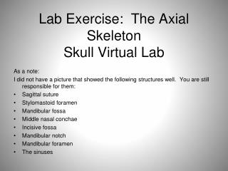 Lab Exercise 11:  The Axial Skeleton Skull Virtual Lab