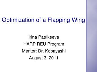 Optimization of a Flapping Wing