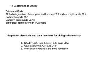 17 September Thursday