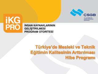 Türkiye'de Mesleki  ve Teknik Eğitim in  Kalitesinin  Arttırılması  Hibe Programı
