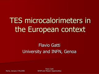 TES microcalorimeters in the European context