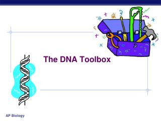 The DNA Toolbox