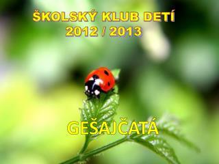 ŠKOLSKÝ KLUB DETÍ 2012 / 2013