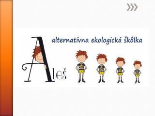 Ako to vzniklo??? - 14. apríl 2013 Bratislava – nápad na zriadenie INEJ škôlky