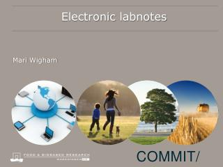 Electronic  labnotes