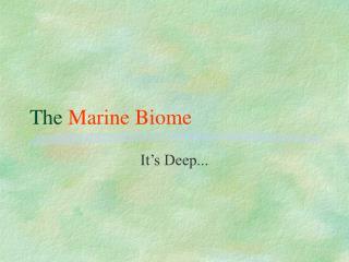 The  Marine Biome