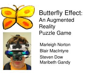 Butterfly Effect: An Augmented Reality  Puzzle Game