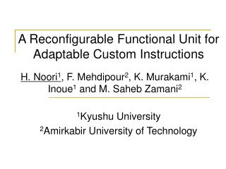 A Reconfigurable Functional Unit for  Adaptable Custom Instructions