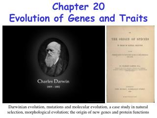 Chapter 20 Evolution of Genes and Traits