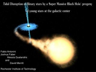 Tidal Disruption of Binary stars by a Super Massive Black Hole: progeny