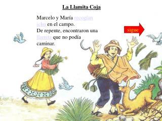 Marcelo y María  recogían ichu  en el campo.