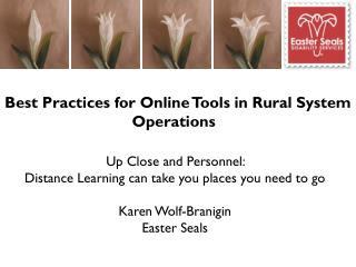 Best Practices for Online Tools in Rural System Operations
