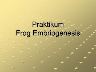 Praktikum  Frog Embriogenesis
