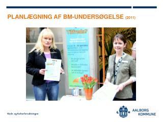 PLANLÆGNING AF BM-UNDERSØGELSE  (2011)