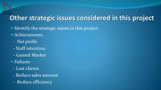 Other strategic issues considered in this project