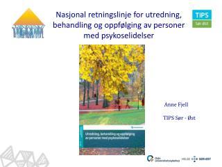 Nasjonal retningslinje for utredning, behandling og oppfølging av personer med psykoselidelser