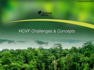 HCVF Challenges & Concepts